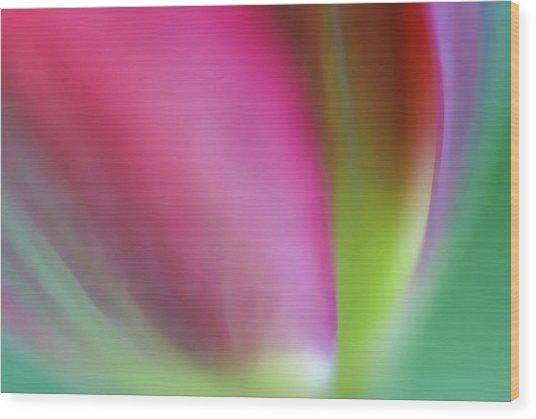 Flaming Tulip Wood Print