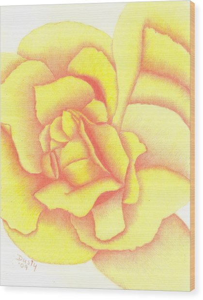 Flaming Yellow Rose Wood Print by Dusty Reed
