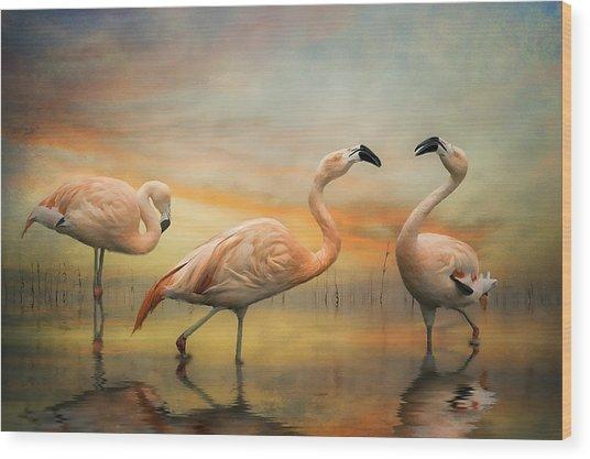 Flamingo Dusk Wood Print