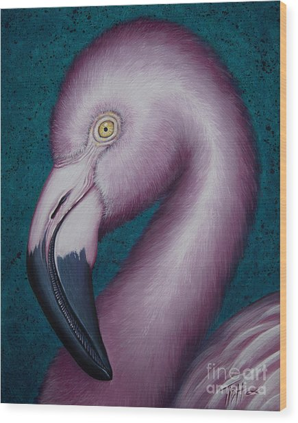 Flamingo Portrait Wood Print