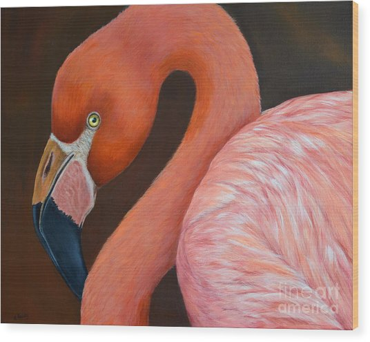 Flamingo Pretty In Pink Wood Print