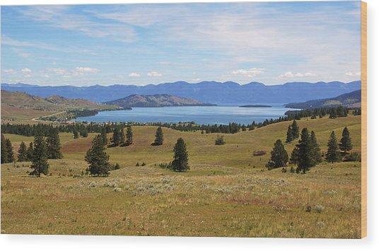 Flathead Lake View Wood Print