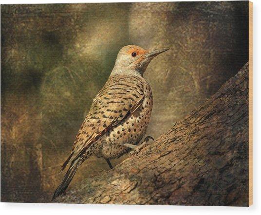 Flicker In A Tree Wood Print