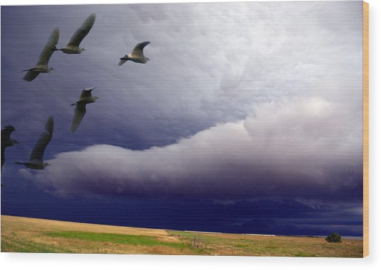 Flight Into The Storm Wood Print