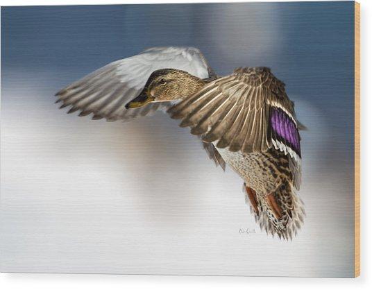 Flight Of The Mallard Wood Print
