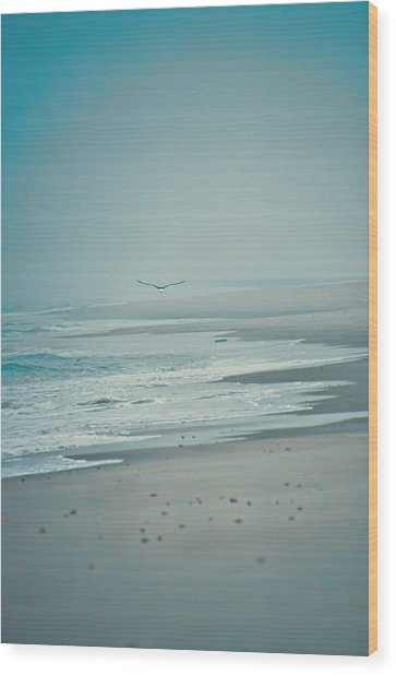 Flight Of Tranquility And Peace Wood Print