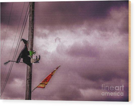 Flight Training Wood Print by Arne Hansen