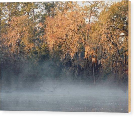Flint River 14 Wood Print