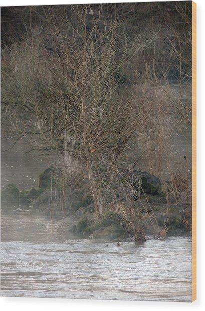 Flint River 19 Wood Print