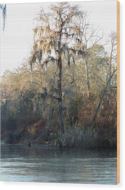 Flint River 30 Wood Print