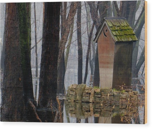 Foggy Swamp Outhouse Wood Print