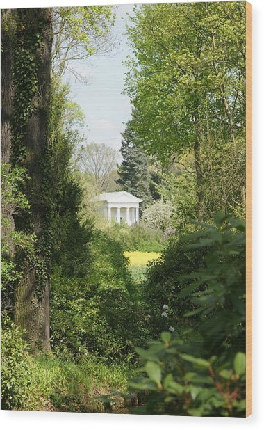 Flora Temple Wood Print by Olaf Christian