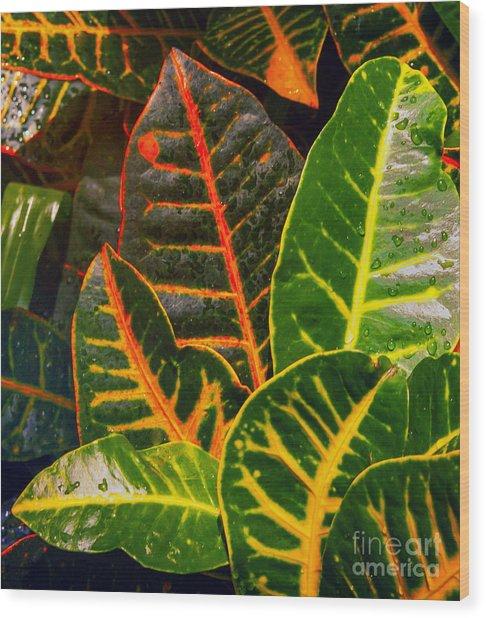 Floral 4 Wood Print