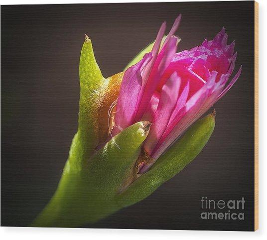 Floral Glove Wood Print