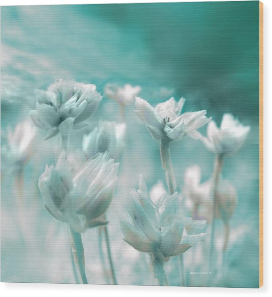 Flores Secas II Wood Print