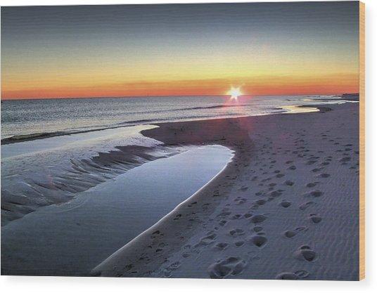 Florida Beach 06 Wood Print