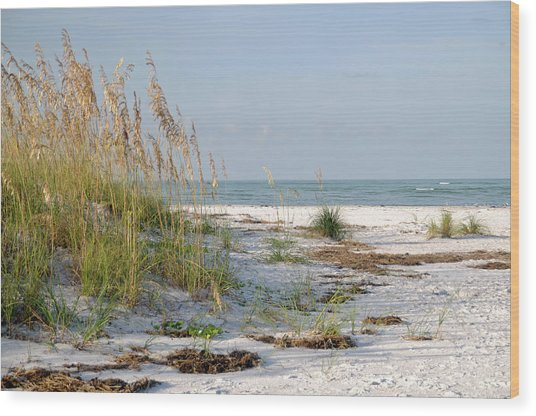 Florida Beach 2 Wood Print