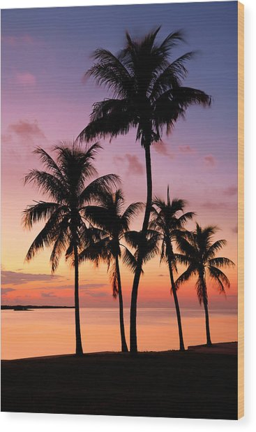 Florida Breeze Wood Print