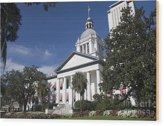 Florida Capital Building Wood Print by Ules Barnwell