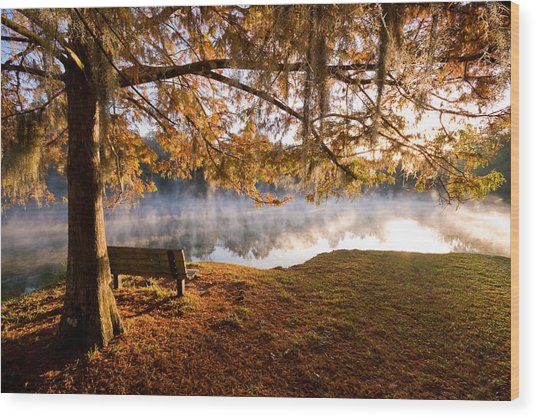 Florida Gem Wood Print