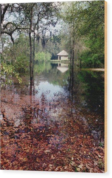 Florida National Cemetary Wood Print