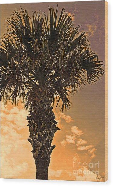 Florida Palm Wood Print