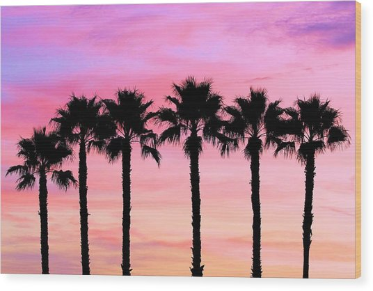 Florida Palm Trees Wood Print