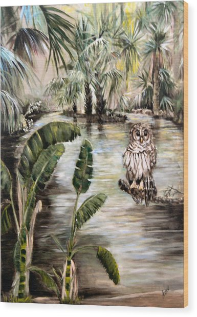 Florida's Barred Owl Wood Print