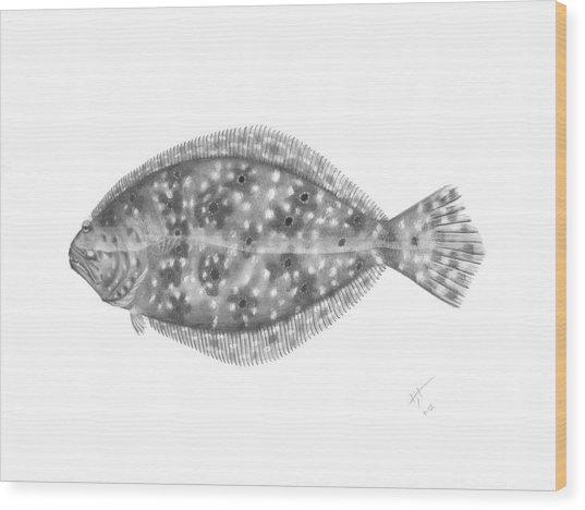 Flounder - Scientific Wood Print