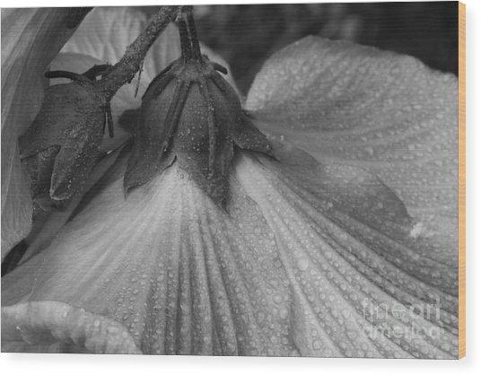 Flowe Wood Print