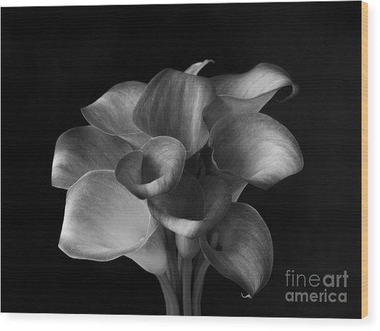 Flower #367 Wood Print