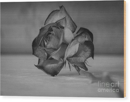Flower #609 Wood Print