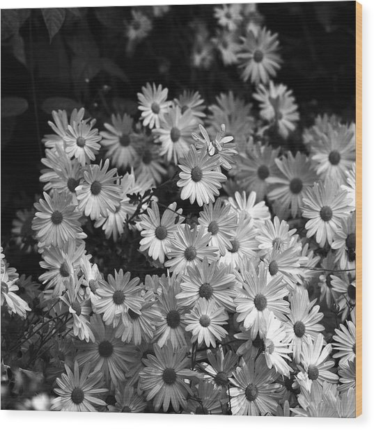 Flower Bouquet Wood Print