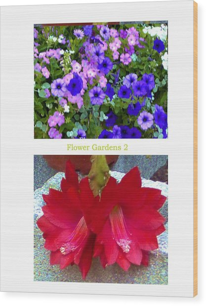 Flower Gardens B Wood Print