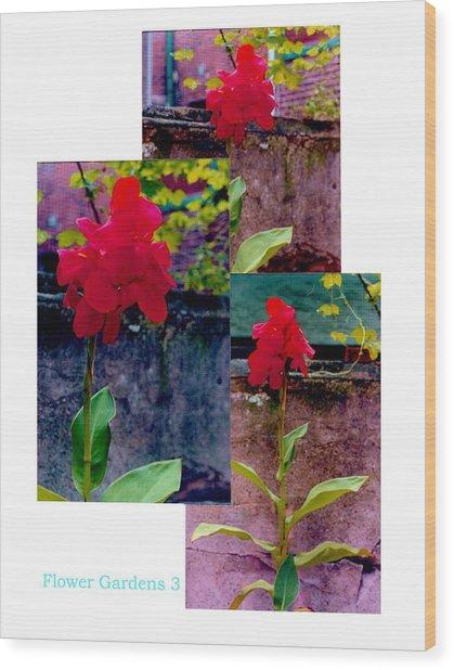 Flower Gardens C Wood Print