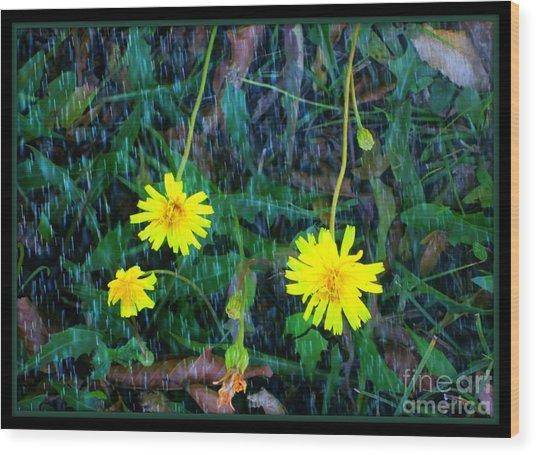 Flower Wood Print by Sky Skier