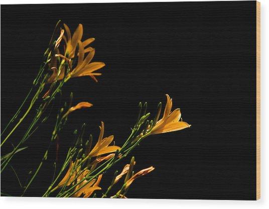 Flowering Golds II Wood Print by Kathi Isserman