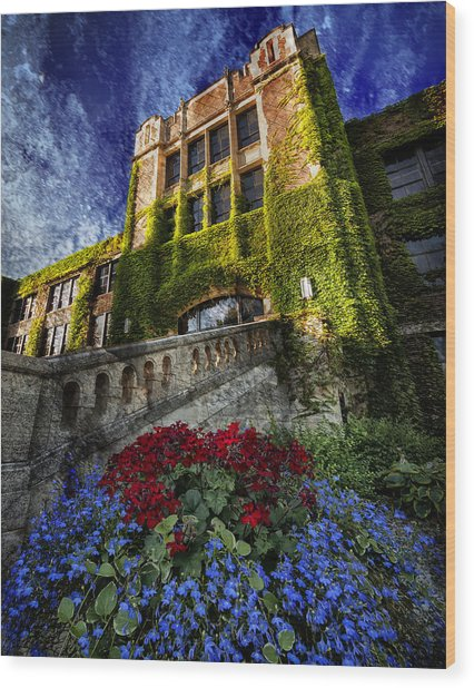 Flowers At Somsen Hall Wood Print