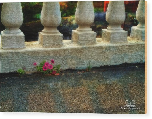 Flowers In The Cracks Wood Print by Dan Quam