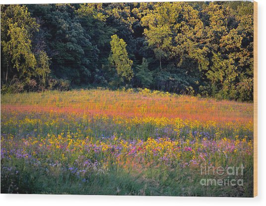 Flowers In The Meadow Wood Print