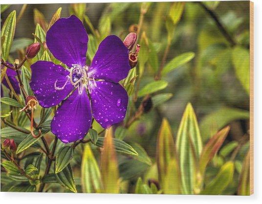 Flowers Love Water Wood Print