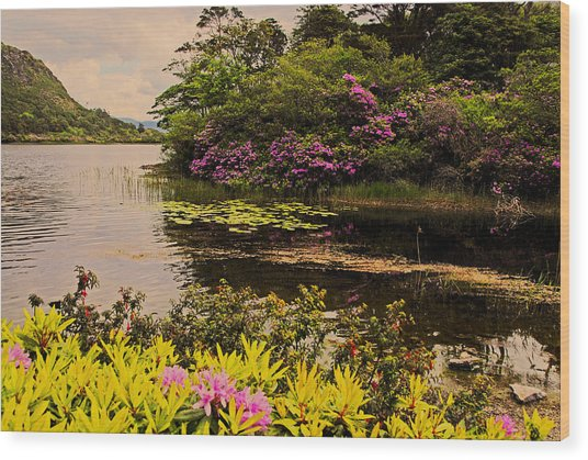 Flowers Of Ireland Lakes Wood Print