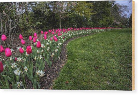 Flowers Of Spring Wood Print