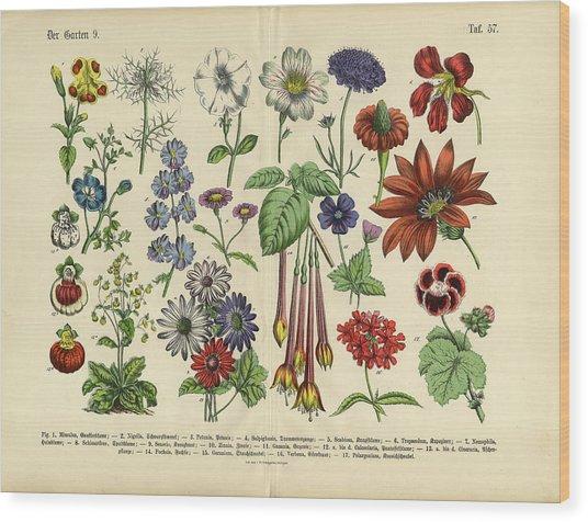 Flowers Of The Garden, Victorian Wood Print by Bauhaus1000