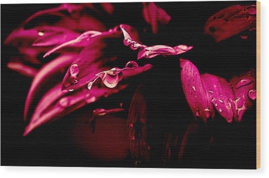 Flowers Tears Wood Print by Jacki Pienta