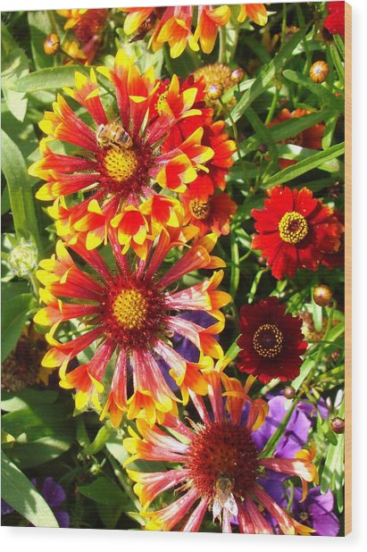 Flowers With Pollinators Wood Print by Van Ness