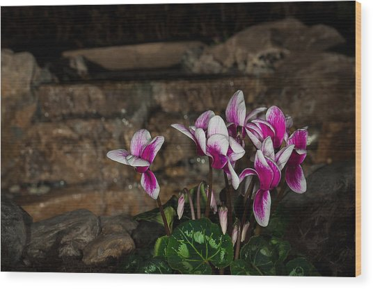 Flowers With Waterfall Backdrop Wood Print
