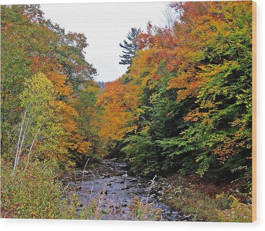 Flowing Into October Wood Print
