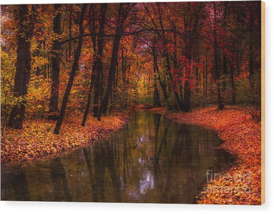 Flowing Through The Colors Of Fall Wood Print