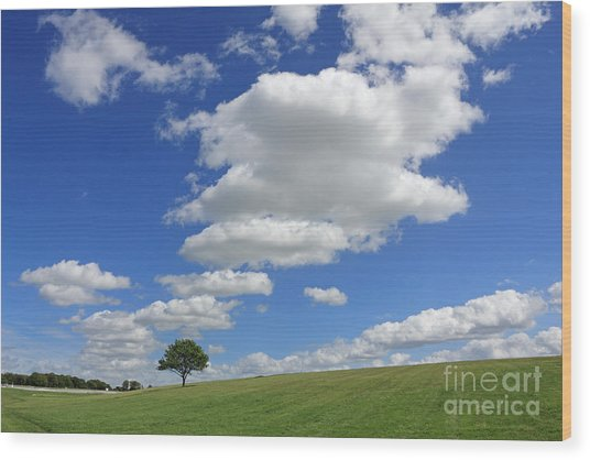 Fluffy Clouds Over Epsom Downs Surrey Wood Print